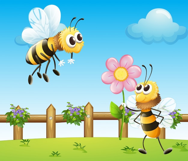 Two bees inside the wooden fence