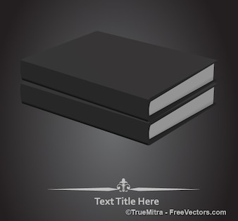 Two books stacked in grayscale