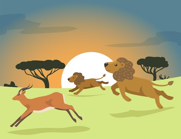 アフリカのフラットイラストで狩猟2匹の漫画のライオン。アフリカのサバンナで日没時にカモシカを追いかけるライオンの誇り。ライオンのプライド、狩猟、野生動物、自然、アフリカ、デザインの捕食コンセプト