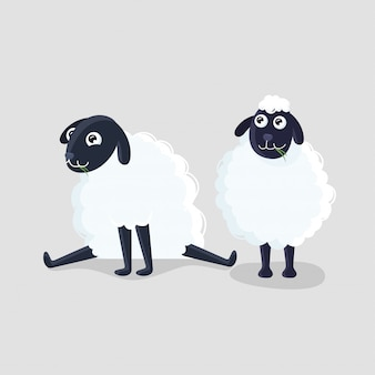 Два мультфильм овец в разных позах на сером фоне.