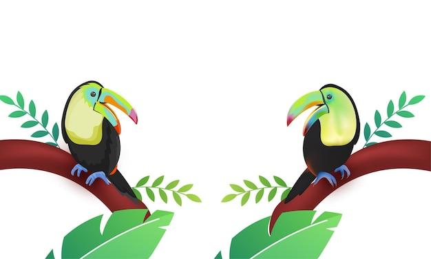 Two cartoon toucan bird sitting on tree branch illustration.