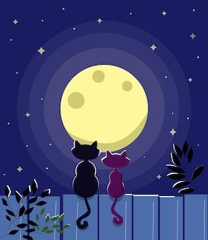 Две кошки сидят на заборе ночь лунный свет