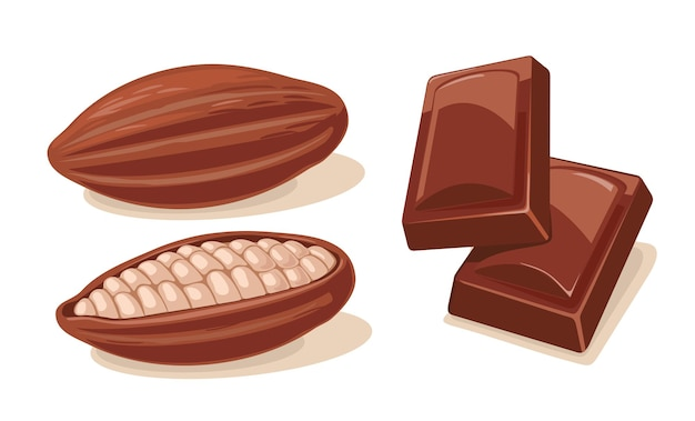 Two chocolate pieces and fruits of cocoa beans