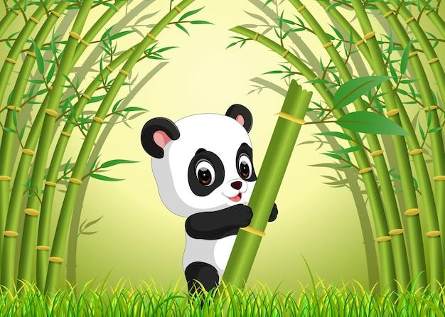 竹の森の2つのかわいいパンダ