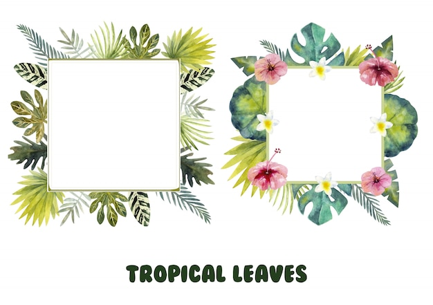 Two decorative frames with tropical leaves and flowers.