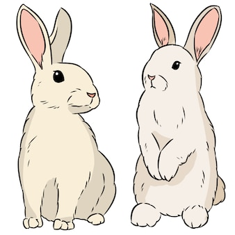 Two easter rabbits hand drawn colorful doodle