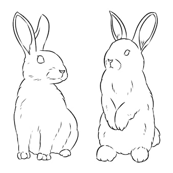 Two easter rabbits hand drawn sketch doodle