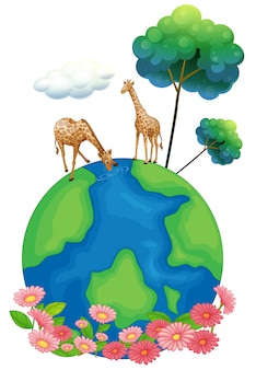 Two giraffes above the earth