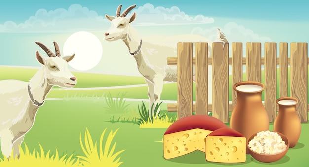 草の上にチーズ、カッテージチーズ、牛乳があるフェンスの近くの2つのヤギと牧草地。リアル。