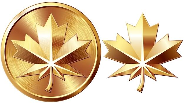 Два золотых кленовых листа, изолированные на белом фоне