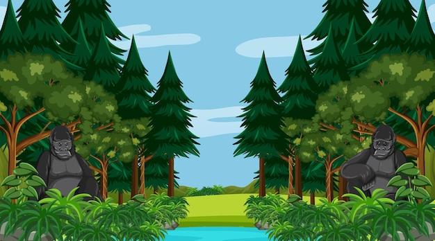 많은 나무가 있는 숲이나 열대 우림 장면에서 두 고릴라