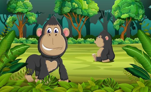 ジャングルの2つのゴリラ
