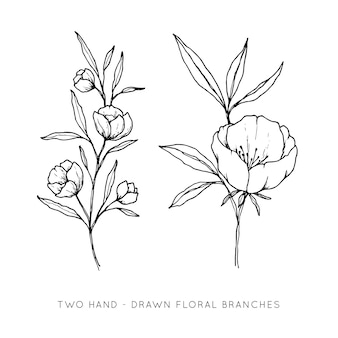 Two hand drawn floral branches
