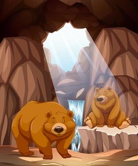洞窟の中の2つの幸せなクマ