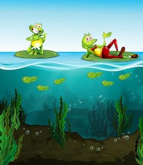 Две счастливые лягушки и головастики в пруду