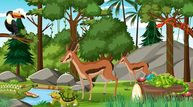 Two impala with other wild animals in forest at daytime scene