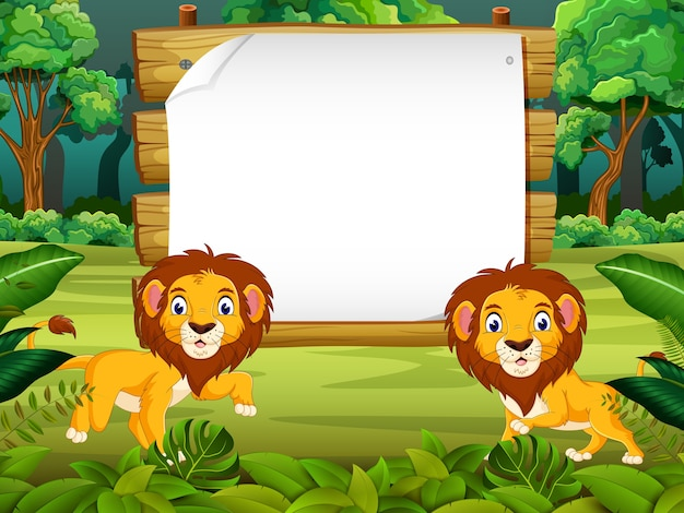 Two lion in forest wiyh blank paper background