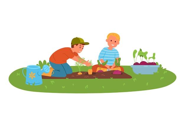 정원에서 vegeatables 당근과 비트를 수확하는 두 명의 어린 소년
