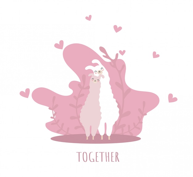Two llamas in love with smile and many details. together. cute alpaca.