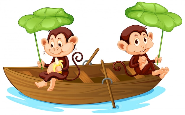 Two monkeys rowing boat in the river