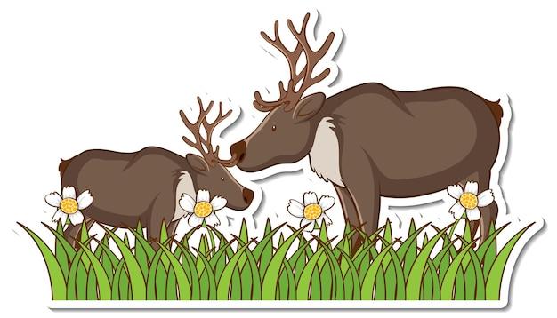 Two moose standing in grass field sticker