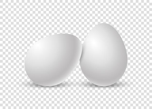 影のある2つのリアルな鶏の卵。