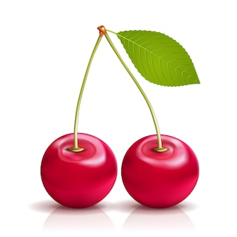 Two realistic vector cherries with leaf isolated on white background