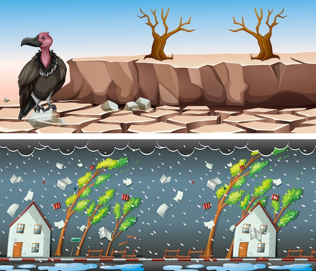 Two scenes with drought and rainstorm