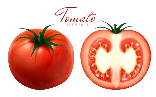 두 토마토 그림 하나 슬라이스 흰색 배경 3d 그림