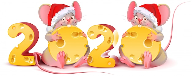 Two twin mice are holding cheese