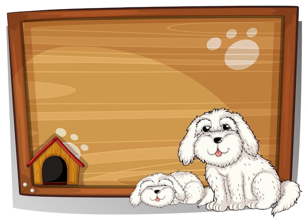 Two white dogs in front of a wooden board