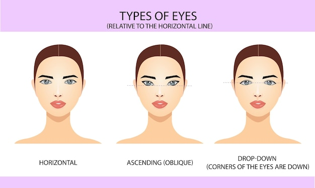 Types of eyes relative to the horizontal line