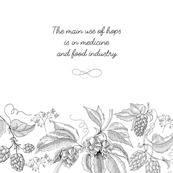 Typography design decorative card sketch with inscription that main use of hopes is in medicine
