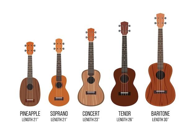 Укулеле, изолированные на белом, разные размеры музыкального инструмента