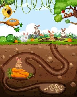 Underground animal burrow with rabbit family