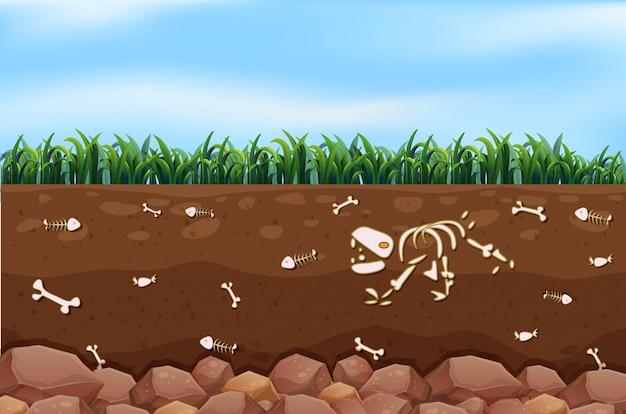 An underground and farm