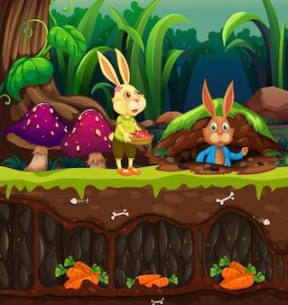 庭のシーンの地面と地下のウサギの穴