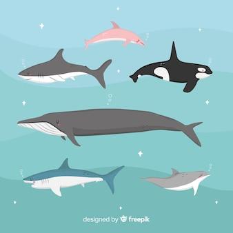 어린이 스타일의 수중 동물 모음