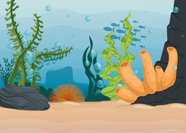 Underwater background, undersea reef, ocean with marine algae scene, habitat marine concept