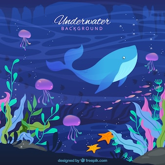 Underwater background with caricatures of aquatic animals