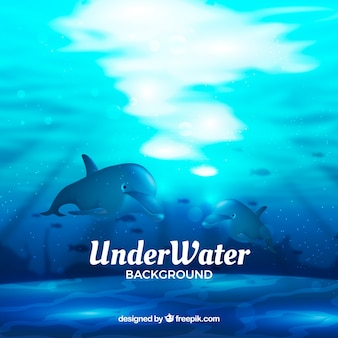 Underwater background with cute dolphins  in realistic style