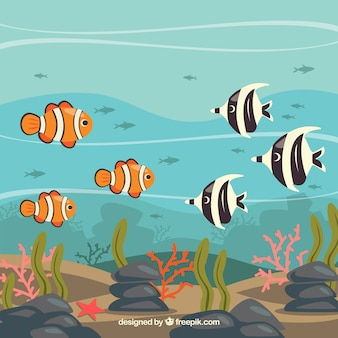 Underwater background with different fishes