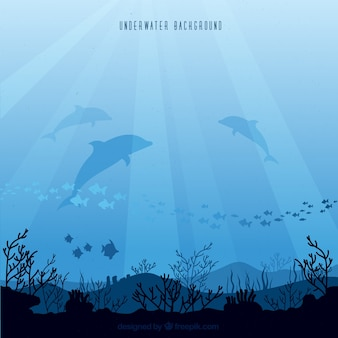Underwater background with different marine species