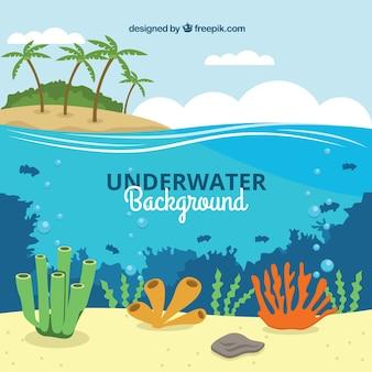 Underwater background with different marine species