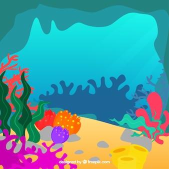 Underwater background with different seaweeds