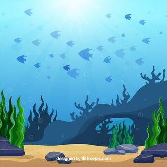 Underwater background with marine animals