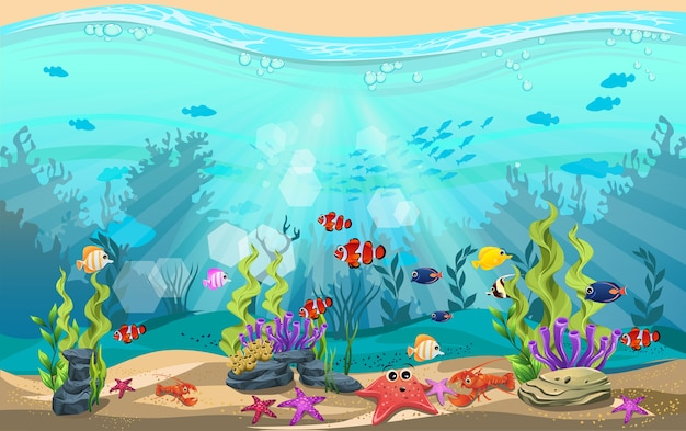 Underwater life and diverse habitats. algae, starfish, fish, lobsters and coral reefs