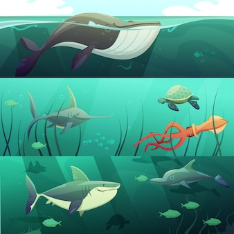 Underwater marine life retro cartoon horizontal banners set with giant shark fish dolphin turtles is