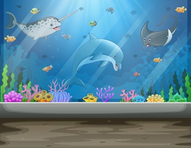 魚と藻類の大きな水槽がある水中博物館