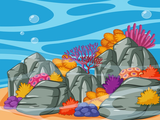 Underwater scene with coral reef and rocks